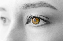 Closeup Portrait Of Woman Face. Macro Of Beautiful Girl Eyes With Bitcoin Symbol Sign In Pupil. Cryptocurrency Cute Female Miner Looking At Window And Dreaming Of Virtual Market Rates Growing Success.