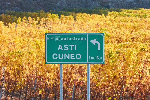 Asti Cuneo motorway street sign and vineyard in autumn with yellow leaves in a s Canvas Print