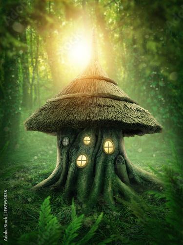 Poster Olive Stump house