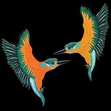 Kingfishers Flying. Vector Ill...