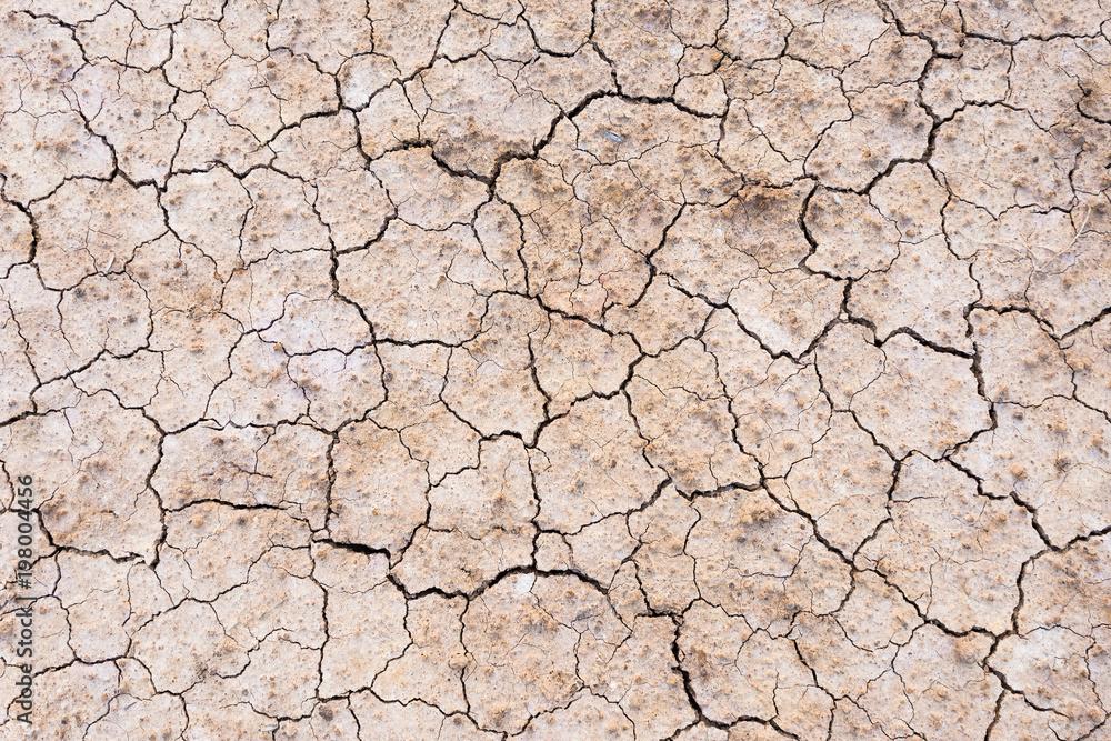 Fototapeta Brown dry soil or cracked ground texture background.