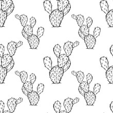 Cactus Seamless Vector Pattern.