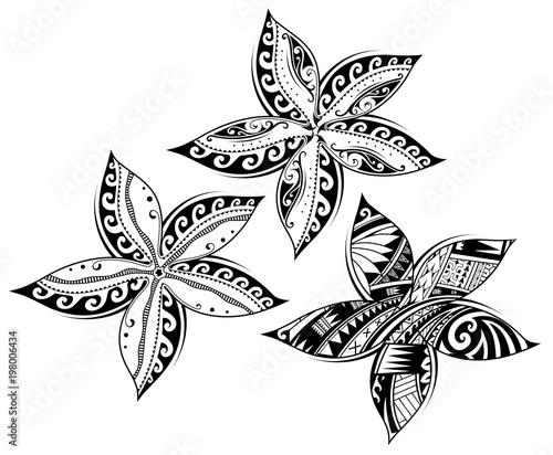Plumeria flower as tribal style tattoo