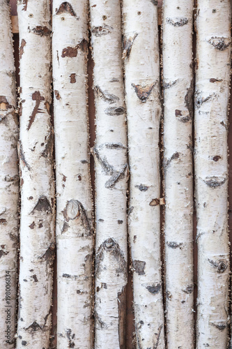 Wall Murals Firewood texture Birch trees