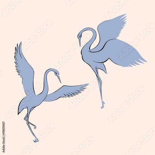 Naklejki żurawie  vector-image-dancing-crane