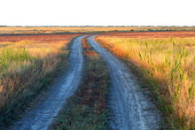 Dirt Road In The Steppe Among ...