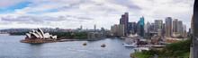 Sydney City Daytime Panorama