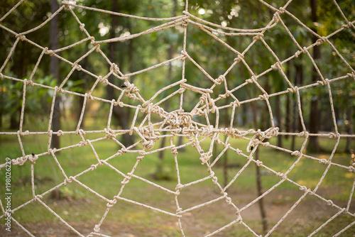 Fotografía Close up Rope tie make to Spider web gossamer on the park
