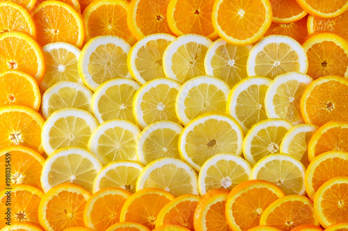 Photo Stands Slices of fruit Abstract background of sliced lemons and around them oranges. Top view.