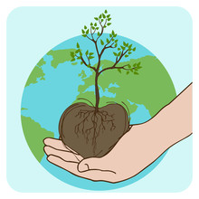Arbor Day Planted Trees