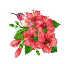 Bouquet Of Hibiscus Flowers An...