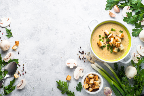 Mushroom Soup puree with croutons Canvas-taulu
