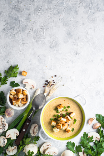 Mushroom Soup puree with croutons Wallpaper Mural