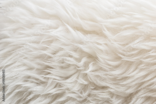 Photo sur Toile Les Textures White soft wool texture background, cotton wool, light natural sheep wool, close-up texture of white fluffy fur, wool with beige tone, fur with a delicate peach tint