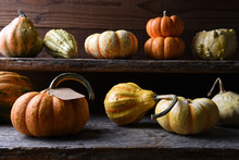 Farm Stand With Autumn Vegetables Including Gourds, Pumpkins And Squash