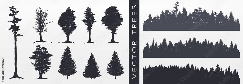 Fototapety, obrazy: Forest silhouette, vector illustration.