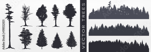 Forest silhouette, vector illustration. - 198132831