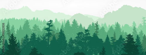 Fototapeta Forest silhouette, vector illustration. obraz