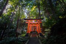Kyoto, Japan At Fushimi Inari ...
