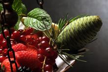 Fruta Del Bosque Frutti Di Bosco Fruit Rouge Waldbeeren ثمرة Berry Ягода  Fructe De Pădure توت
