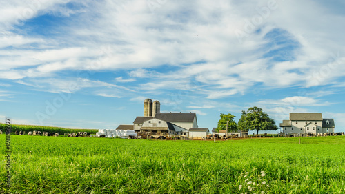 Fotografia  Amish country farm barn field agriculture in Lancaster, PA