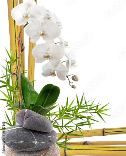 composition avec bambou,orchidée et galets Canvas-taulu