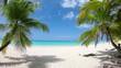 Beach Palm Trees Mt Otemanu Overwater Luxury Bungalows In Tropical Aquamarine/Beach palm trees luxury Bungalows in tropical Aquamarine lagoon a Tahitian vacation resort of Bora Bora South Pacific