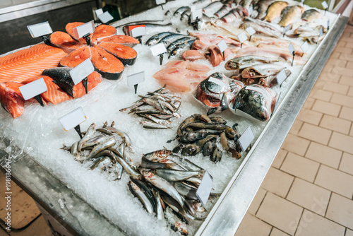 close up view of arranged raw seafood in supermarket Wallpaper Mural