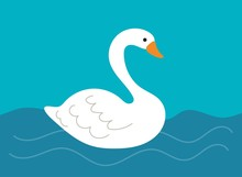 Simple White Swan Sitting In A...