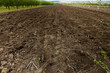 canvas print picture - soil texture.Ground Texture. Top View of a Dark Ground Surface