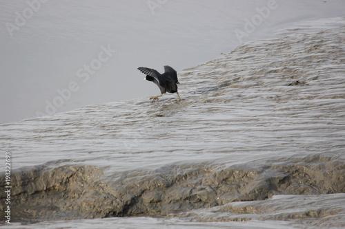 Spoed Foto op Canvas Noordzee Ab in die Fluten