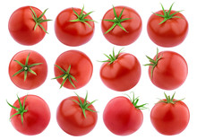 Isolated Tomato. Whole Tomatoes On White Background. Collection