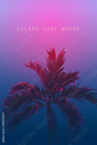 palm 80s neon night escape Wall mural