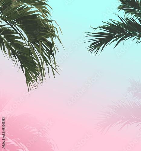 palmowy-slodki-pastelowy-lata-tlo