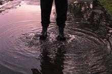Reflecting Puddle, Men Steps I...