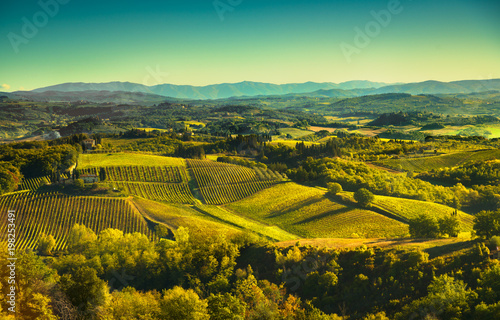 Fototapety, obrazy: Panoramic view of countryside and chianti vineyards from San Gimignano. Tuscany, Italy
