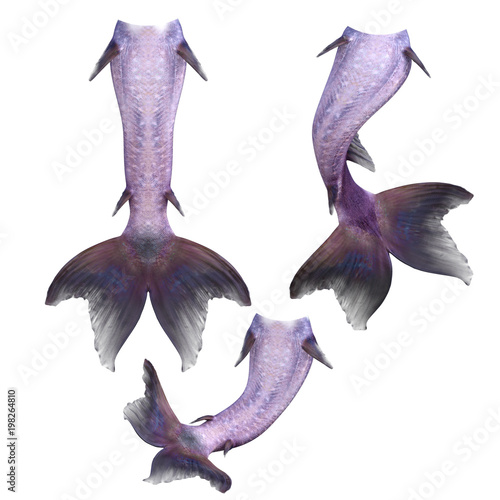 Set of purple mermaid tails isolated on white, 3d render Canvas Print