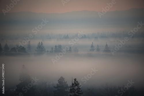 Poster Morning with fog Photo taken by: Mark Newton (Skyhighperspectives.com)