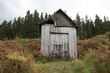 A Rusty Bicycle Discarded In F...