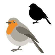 Robin Bird Vector Illustration Flat Style  Silhouette
