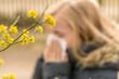 canvas print picture - Mädchen mit Heuschnupfen vor gelb blühender Kornelkirsche