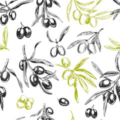 Fototapeta Olive branches, hand drawn retro style vector illustrations.