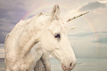 Photo Realistic Unicorn walking by the ocean with rainbow sky