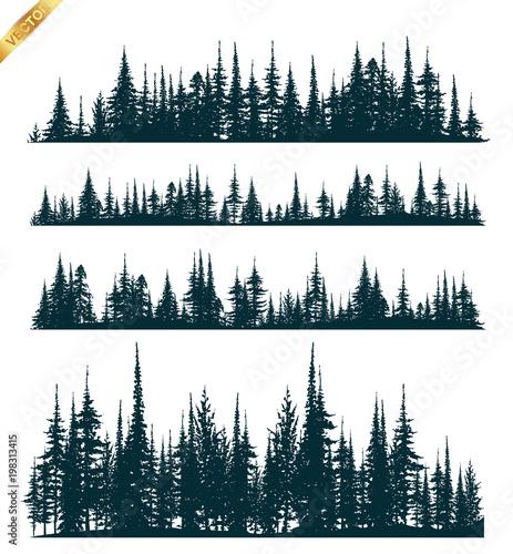 Fotografija  Beautiful forest full Tree banners.