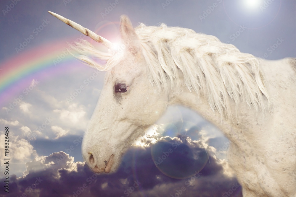 Unicorn in the rainbow sky