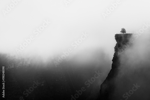 Fotomural misty canyon with sharp cliff iin Delika