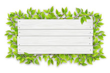 Empty White Wooden Sign With Space For Text On A Background Of Tree Branches With Green Leaves. The Template For A Banner Or An Advertisement For A Seasonal Discount.