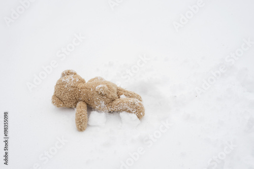 Foto op Plexiglas Arctica Rear view Teddy bear lying alone on snow during winter time, One Brown bear laydown on cold snow, Kid soft toy lost in the park