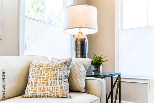 Closeup of two pillows on couch or sofa by bright window in modern apartment, ho Wallpaper Mural