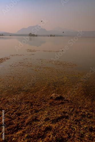 Foto op Aluminium Zalm Landscape of lake